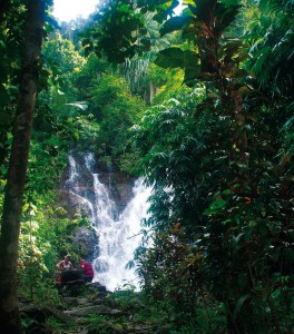 Visit a waterfall on an Elephant Trekking excursion