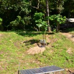 Solar power used to provide electricity to Koh Ra Beach Camp