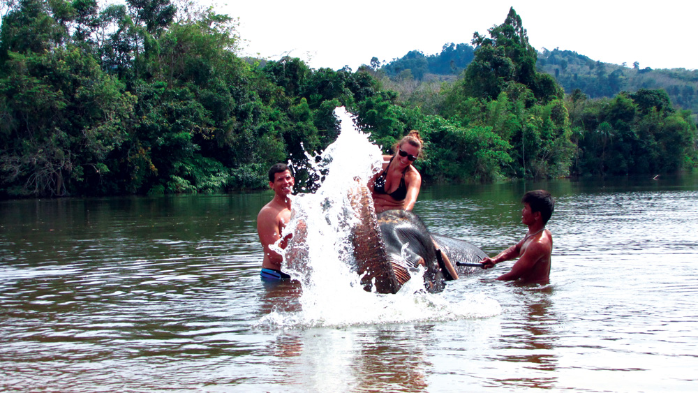 Elephant Bathing Khao Lak Tours