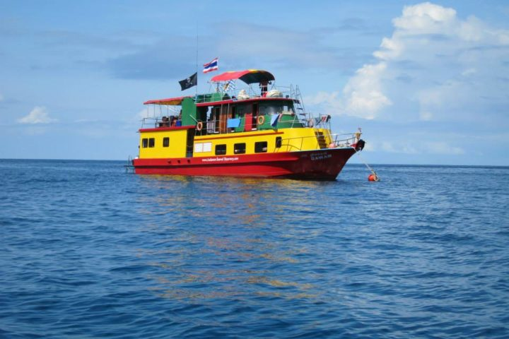 Reggae Queen - Similan Snorkel Liveaboard Thailand